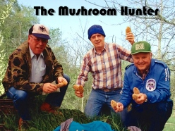 morel mushrooms, hunting, Indiana, France Park, Bill William Torgerson, Martin Torgerson