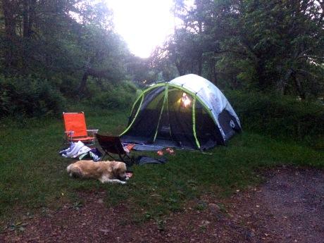 Torgerson, Asheville, Skyline Drive, Blue Ridge Parkway, Harper's Ferry